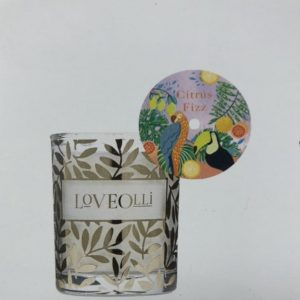 Citrus Fizz Votives LoveOlli Mini Candle